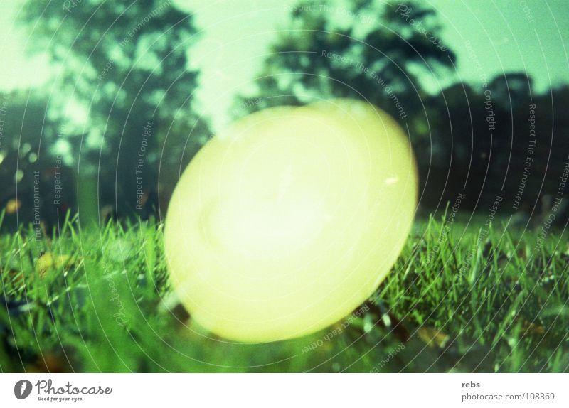 ...und die welt dreht sich weiter! Himmel grün Sommer Freude Wiese Graffiti Frühling Park Kreis rund Rasen analog Reaktionen u. Effekte Himmelskörper & Weltall