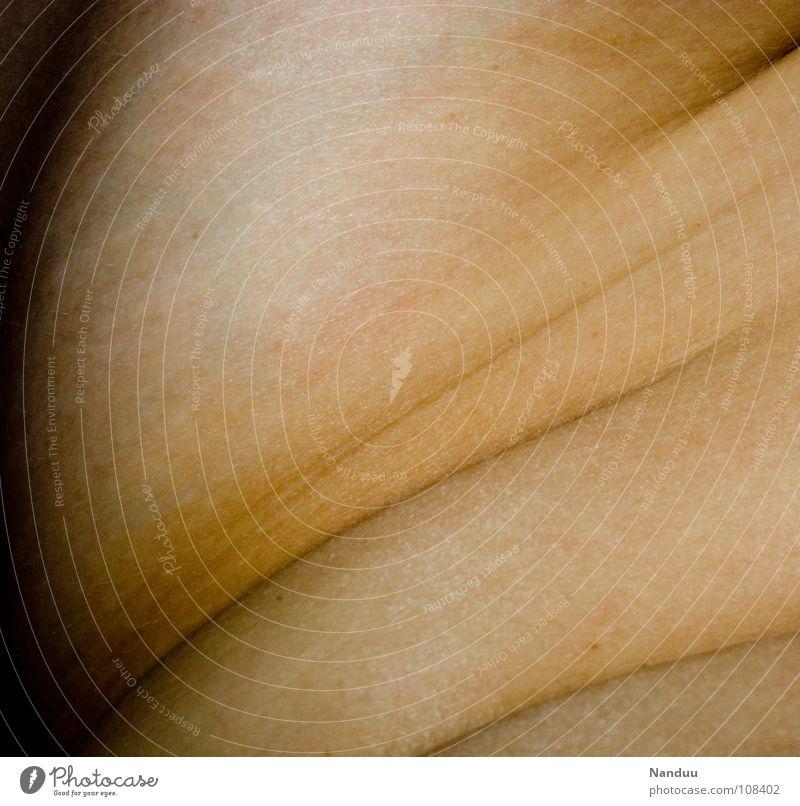 Wellenlinien schön Landschaft feminin nackt Gefühle offen Haut Sicherheit Vergänglichkeit Wüste nah Falte Übergewicht dick Bauch Geborgenheit