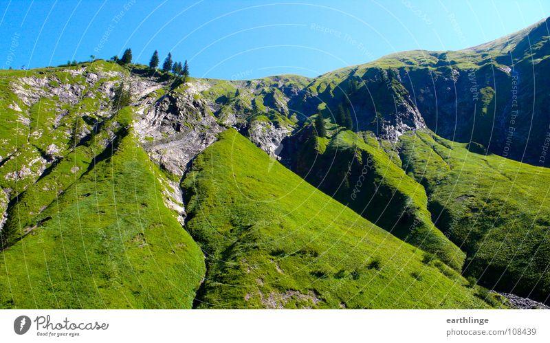 Ho-Ho, Ho-Hohe Berge blau grün Sommer Erholung Berge u. Gebirge Gras Stein Zufriedenheit Idylle Alpen Tanne saftig Digitalfotografie Felsspalten Bergkamm Querformat