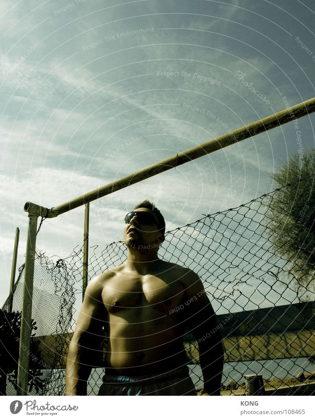 dreaming of venice beach Mann Sommer Bewegung Kraft Felsen Energiewirtschaft groß Coolness Macht Sport-Training stark Zaun sportlich Dynamik Sonnenbrille