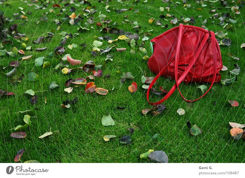 gripsack rot gelb grün braun mehrfarbig Blatt frisch Herbst Eindruck Herbstlaub Wiese saftig nass Tasche Beutel Handtasche schick Farbfleck grün-rot