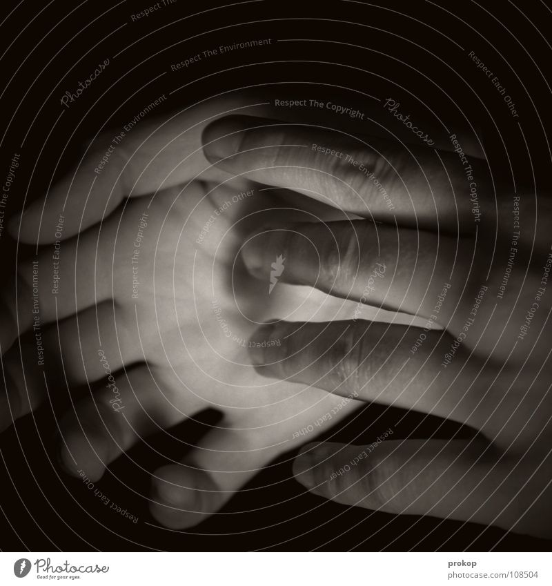 Ohne Rose Frau Mensch Kind Hand Mädchen schön ruhig schwarz dunkel Gefühle Traurigkeit Haut Finger geschlossen Trauer Vertrauen