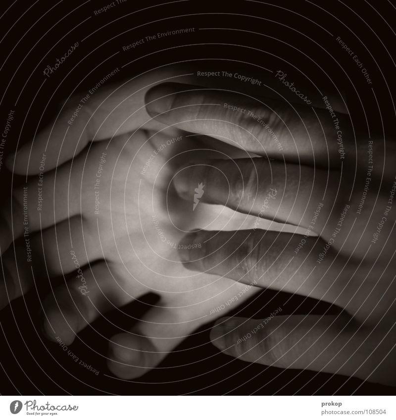 Ohne Rose Hand dunkel Finger schön zart Zärtlichkeiten berühren Streicheln schwarz Frau Mädchen gepflegt Gefühle Trauer tragisch Verzweiflung Vertrauen