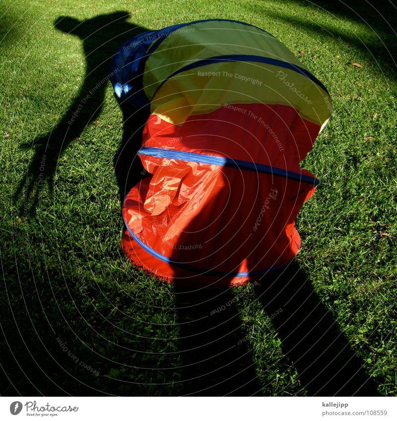 schattenwurm Mensch Tier Spielen Garten träumen gehen laufen nass wandern liegen Aktion fahren Rasen Spielzeug Insekt Vergangenheit
