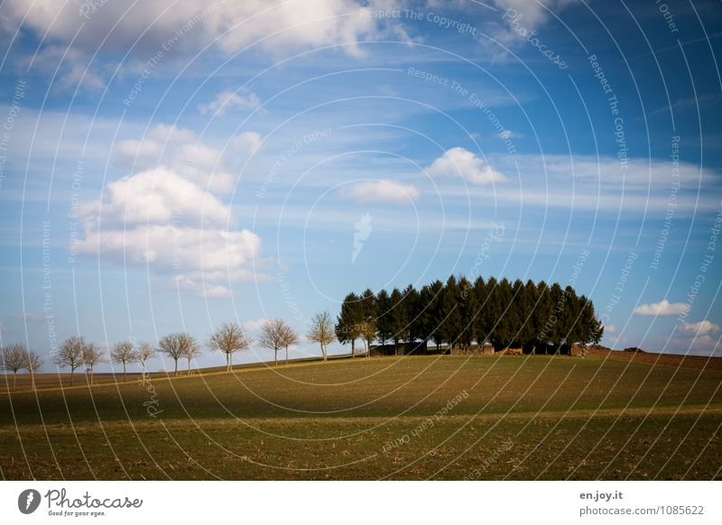 Wachstum Himmel Natur Ferien & Urlaub & Reisen blau Pflanze grün Baum Landschaft Wolken Wald Umwelt Gras Frühling Horizont Feld