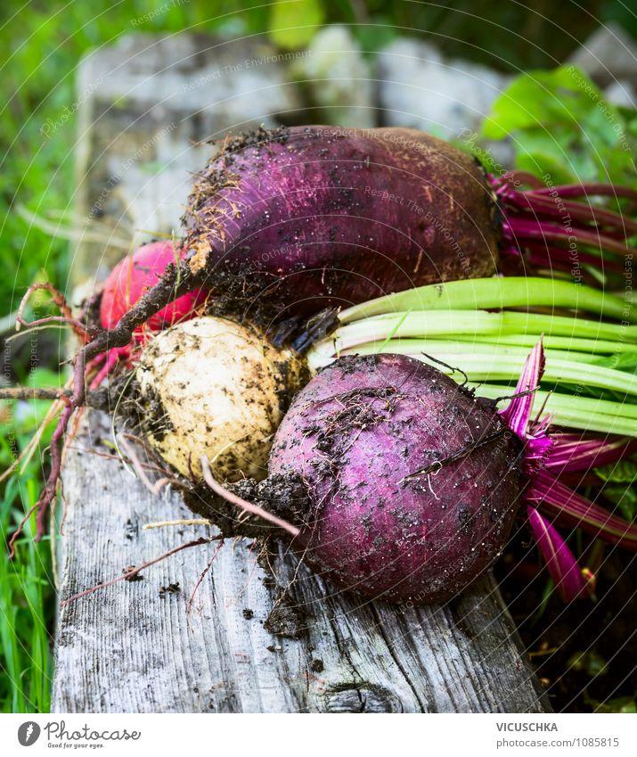 Verschiedene Rote Bete auf altem Holz Lebensmittel Gemüse Bioprodukte Vegetarische Ernährung Diät Lifestyle Design Gesunde Ernährung Freizeit & Hobby Sommer