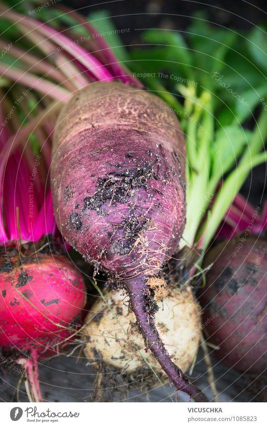 Rote Bete Rüben Lebensmittel Gemüse Ernährung Bioprodukte Vegetarische Ernährung Diät Stil Design Gesunde Ernährung Garten Natur Beet red Hintergrundbild
