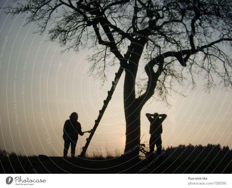 Geg und ich Mensch Himmel blau schön Baum Freude dunkel Musik Kunst orange Kultur Gitarre Leiter Verlauf beeindruckend Farbverlauf