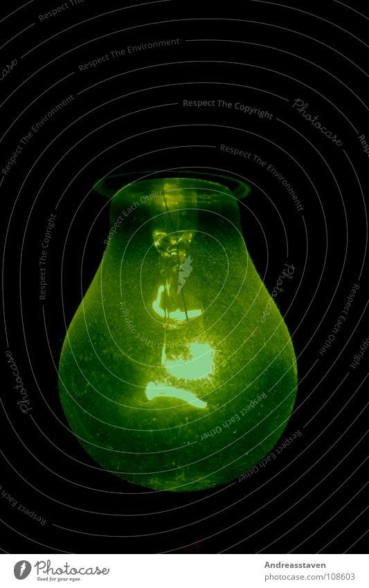 Glühlampe grün schwarz Farbe Lampe Wand Glas Elektrizität Macht Dinge Glühbirne