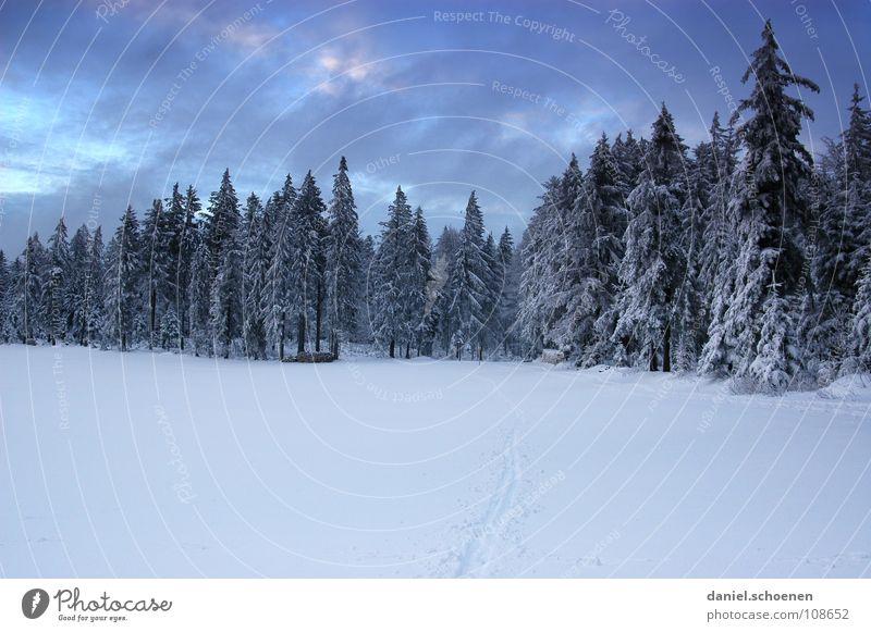 Weihnachtskarte 7 Natur weiß Ferien & Urlaub & Reisen Winter Einsamkeit Wolken Wald dunkel Schnee Wetter Hintergrundbild Freizeit & Hobby wandern Tanne mystisch