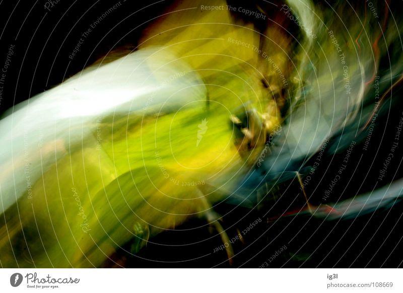 3 seconds to death Mensch grün gelb Wärme Gefühle Tod außergewöhnlich See Angst PKW gefährlich Kraft planen stoppen stark Konzentration