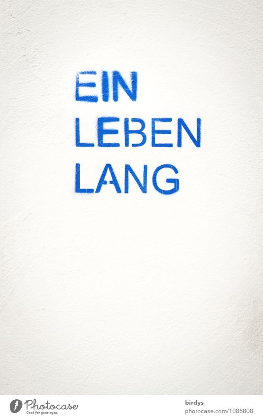 Rückblick blau weiß Leben Tod außergewöhnlich Zeit hell Zusammensein Schriftzeichen Beginn Zukunft einfach Buchstaben Ziel Vergangenheit Glaube