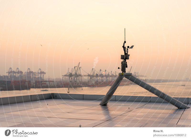 Blick auf den Hamburger Hafen Industrie Fluss Schifffahrt Binnenschifffahrt authentisch Dachterrasse Krahn Messinstrument Elbe Aussicht Farbfoto Außenaufnahme