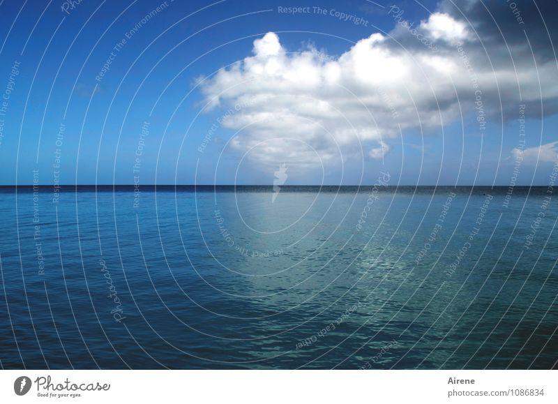 da kommt noch was... Urelemente Luft Wasser Himmel Wolken Gewitterwolken Sommer Wetter Schönes Wetter Unwetter Meer Atlantik bedrohlich Ferne Unendlichkeit blau