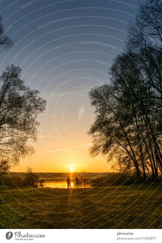 Abend am See Ferien & Urlaub & Reisen Ausflug Mensch feminin 3 Umwelt Natur Landschaft Wasser Himmel Sonne Sonnenaufgang Sonnenuntergang Baum Park Küste Seeufer