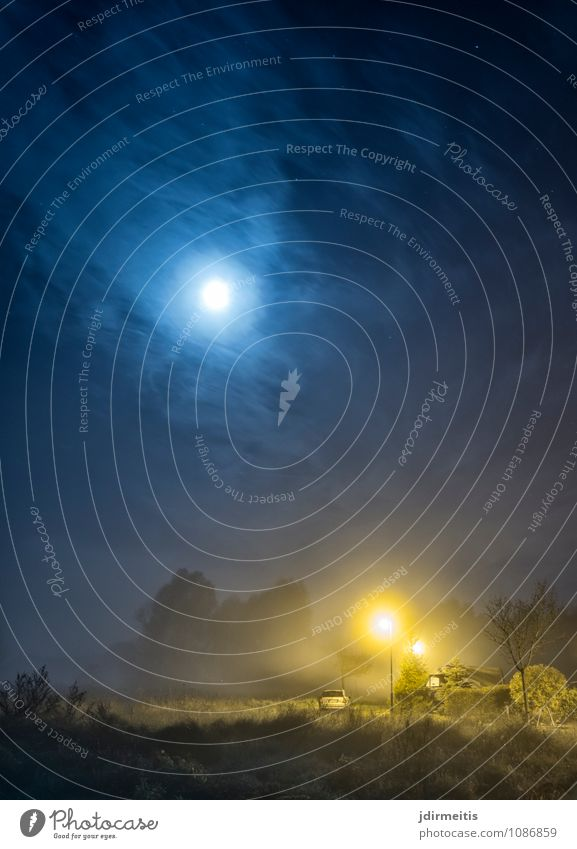 Vollmond Umwelt Natur Landschaft Himmel Wolken Nachthimmel Mond Garten Feld Dorf Kleinstadt Stadt Park dunkel Baum Straßenbeleuchtung Farbfoto Außenaufnahme