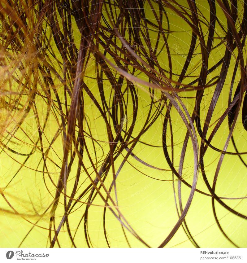 Haare gehen WIRKLICH immer! *g* Mensch schön gelb kalt Haare & Frisuren braun Wellen nass Spitze Schwimmbad Bad Wellness Locken feucht Friseur langhaarig