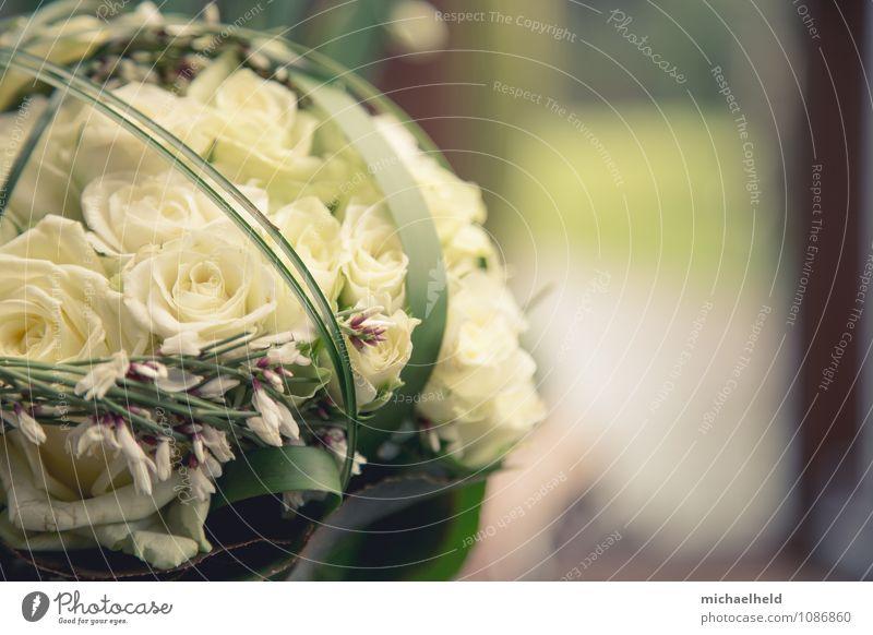 Brautstrauß aus Rosen 1 Valentinstag Muttertag Hochzeit Trauerfeier Beerdigung Pflanze Blume Blumenstrauß Kitsch Gefühle Liebe Standesamt Unschärfe