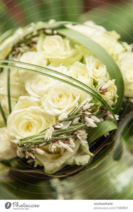 Brautstrauß aus Rosen 2 Feste & Feiern Valentinstag Muttertag Hochzeit Geburtstag Trauerfeier Beerdigung Pflanze Blumenstrauß Kitsch Liebe Standesamt