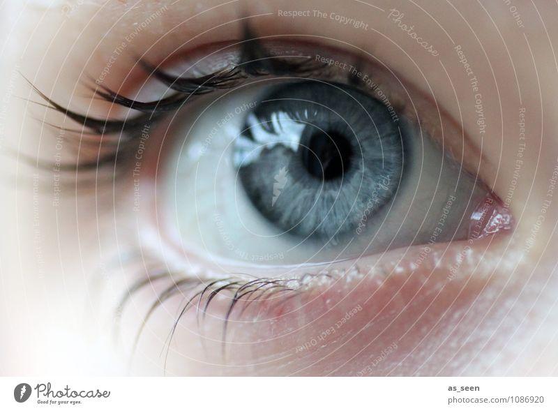 Optik schön Gesundheitswesen Wellness Optiker Augenheilkunde Unterhaltungselektronik Fortschritt Zukunft Informationstechnologie feminin Medien Neue Medien