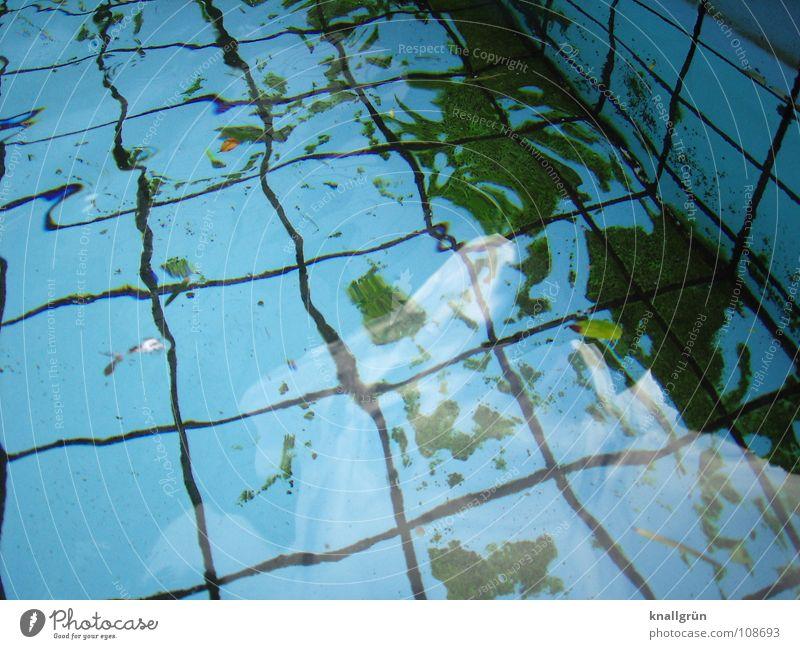 Lichtbrechung Schwimmbad Quadrat Algen grün Reflexion & Spiegelung Herbst Wasser Becken Fliesen u. Kacheln blau Fuge