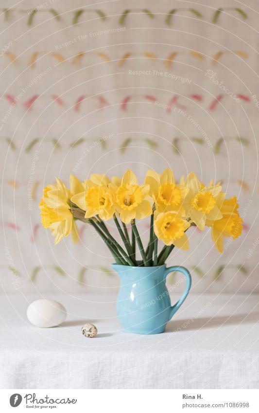 Nr. IV Lifestyle Ostern Blume Blühend leuchten hell blau gelb Lebensfreude Frühlingsgefühle Stillleben Vase Tischwäsche Narzissen Ei Dekoration & Verzierung