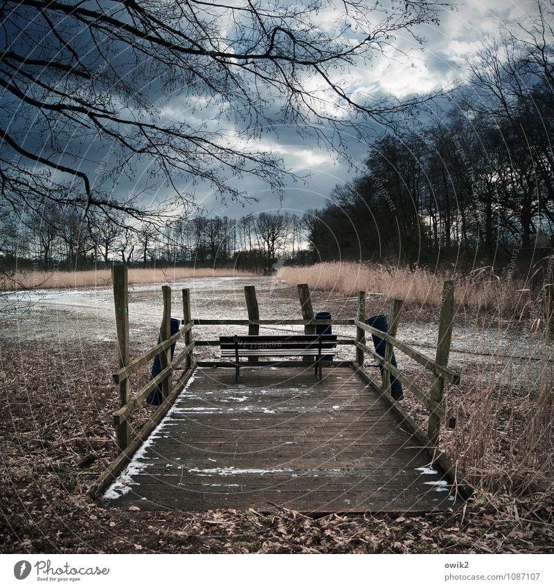 Logenplatz Natur Pflanze Landschaft ruhig Umwelt Holz Idylle Aussicht einfach Geländer Bank
