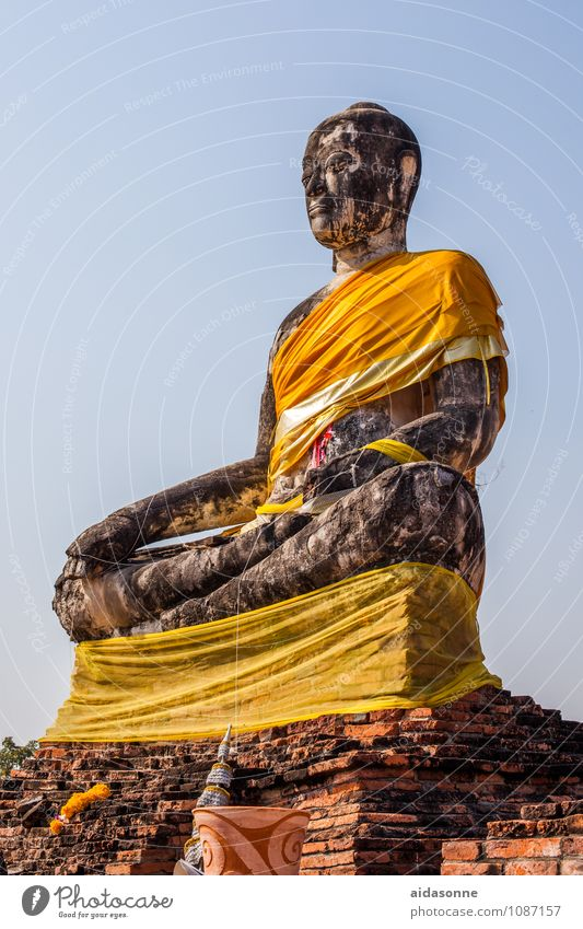 Buddha Kunst Ausstellung Skulptur Kultur Subkultur Erholung sitzen Farbfoto Außenaufnahme Menschenleer Tag Licht Sonnenlicht