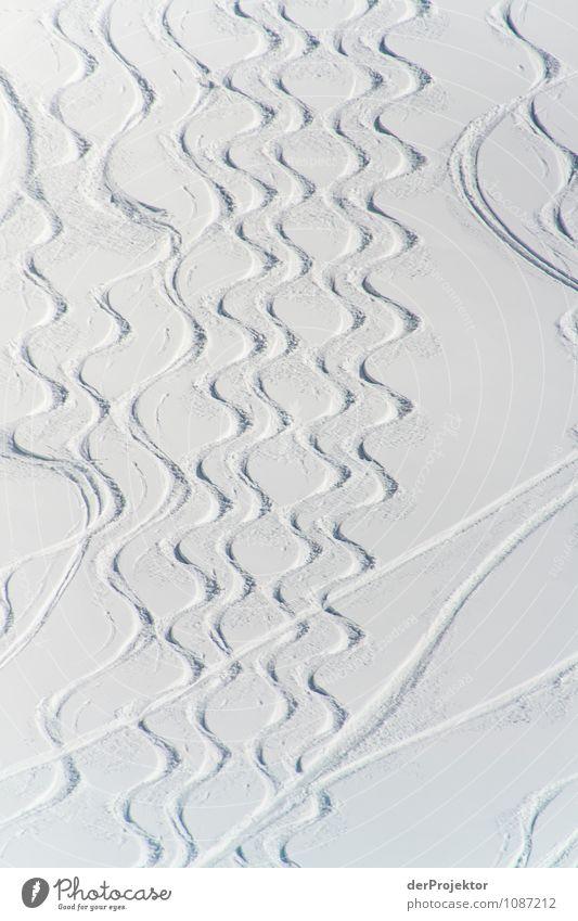 Pedant und Chaot fahren Ski Natur Ferien & Urlaub & Reisen Pflanze Landschaft Tier Ferne Winter Berge u. Gebirge Umwelt Schnee Sport Freiheit Linie Tourismus Eis Ausflug