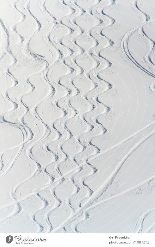 Pedant und Chaot fahren Ski Natur Ferien & Urlaub & Reisen Pflanze Landschaft Tier Ferne Winter Berge u. Gebirge Umwelt Schnee Sport Freiheit Linie Tourismus