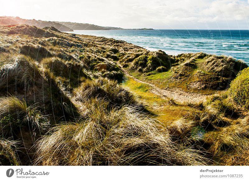 Hier entstand ein Pilcherroman Ferien & Urlaub & Reisen Tourismus Ausflug Ferne Freiheit Umwelt Natur Landschaft Pflanze Frühling Schönes Wetter Wiese Wellen