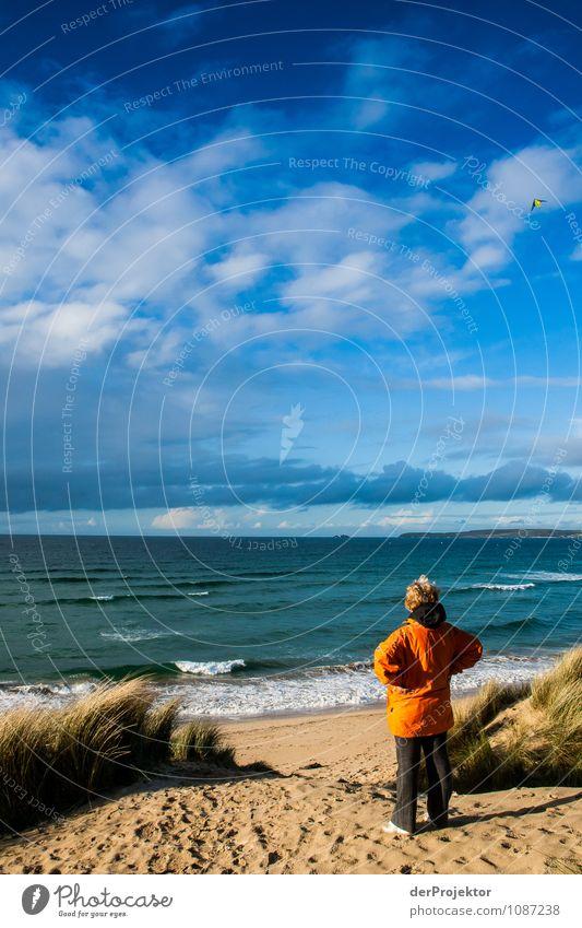 Einmal tief durchatmen Mensch Frau Natur Ferien & Urlaub & Reisen Pflanze Meer Landschaft Freude Tier Strand Ferne Umwelt Gefühle Senior Küste Frühling