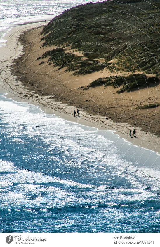 ... und hier das ganz bei Flut Natur Ferien & Urlaub & Reisen Pflanze Erholung Meer Landschaft Freude Tier Strand Ferne Umwelt Gefühle Küste Frühling Glück