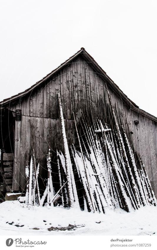 Riesenmikado im Winter Natur Ferien & Urlaub & Reisen Landschaft Haus Winter kalt Berge u. Gebirge Umwelt Gefühle Wege & Pfade Schnee Gebäude Eis Tourismus Ausflug Schönes Wetter