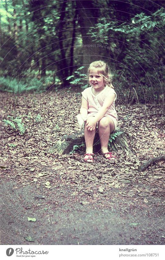 Wie niedlich! Kind Mädchen Baum Sommer Freude Blatt Wald lachen sitzen Sechziger Jahre