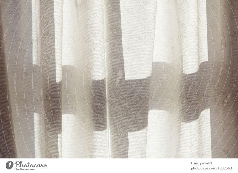 erster Blick am Morgen Vorhang Sicherheit Schutz Geborgenheit Schattenspiel Morgendämmerung Sichtschutz Fenster Licht Gardine Innenaufnahme Detailaufnahme