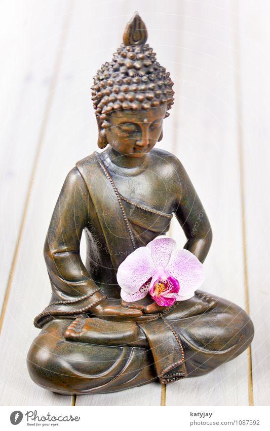 Buddha Buddhismus Figur Orchidee Statue Religion & Glaube siddhartha ruhig Erholung Gesicht asiatisch Gebet Meditation kultig Kunst Kultur Geistlicher Yoga Zen