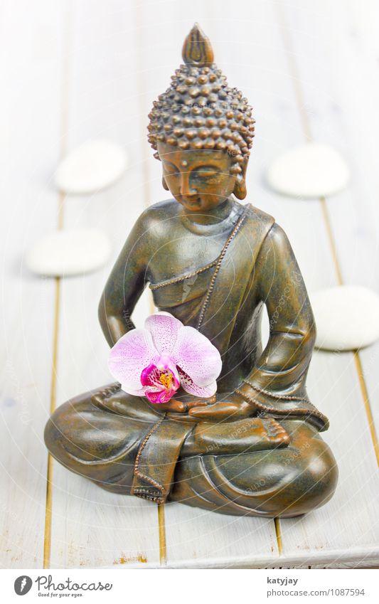 Buddha Buddhismus Figur Orchidee Statue Religion & Glaube siddharta ruhig Erholung Gesicht asiatisch Gebet Meditation kultig Kunst Kultur Geistlicher Yoga Zen