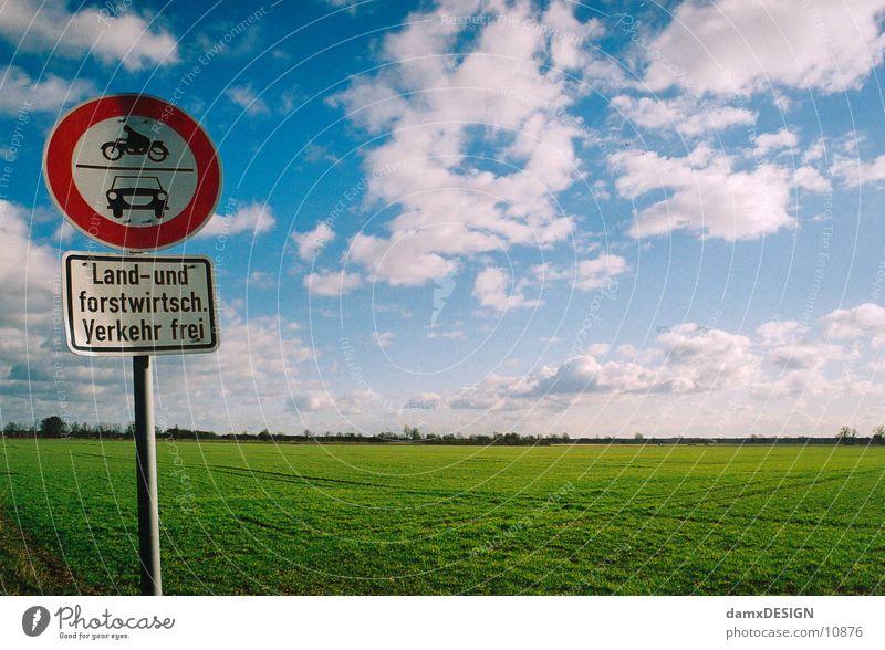 grüne Wiese trifft blauen Himmel Gras Wolken Strukturen & Formen Schilder & Markierungen