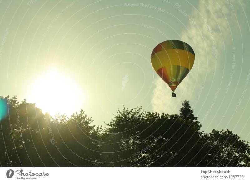 Reise zur Sonne Natur Sommer Erholung Bewegung Gefühle natürlich Glück Freiheit fliegen Zufriedenheit hoch fantastisch Ausflug Beginn Lebensfreude