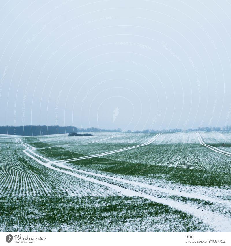 der Winter geht Himmel kalt Schnee Frost Landwirtschaft