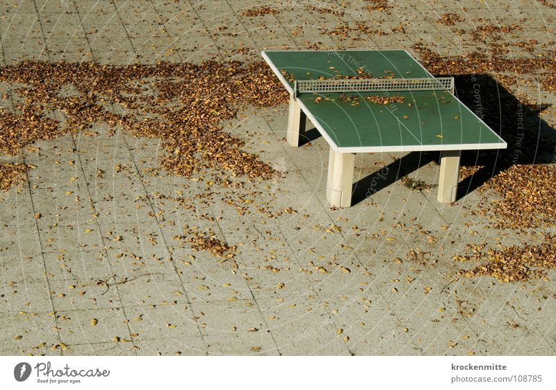 Der Herbst legt sich übers Land Blatt Herbstwetter Spielen Jahreszeiten Bodenplatten Herbstlaub Menschenleer grau Pingpongtisch Ping Pong Tisch Einsamkeit Netz