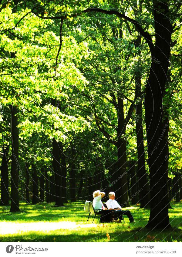 morgens, halb zehn in deutschland I Mensch Baum Sommer Freude ruhig Haus Wolken Einsamkeit Wald dunkel Erholung Gras Traurigkeit Park Denken Nebel