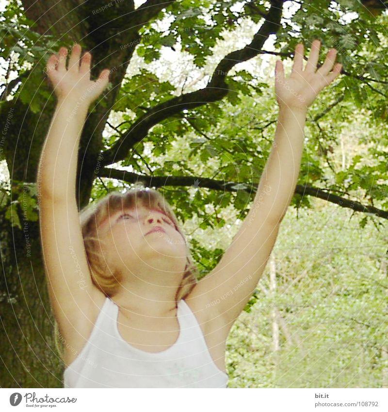 Zehn kleine Zappelfinger Mädchen Kind blond Arme Neugier Natur Kleinkind entdecken positiv Gesicht strecken Erreichen Unbeschwertheit Naturliebe Kinderhand