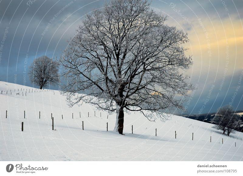 Weihnachtskarte 8 Himmel Natur blau weiß Baum Ferien & Urlaub & Reisen Winter Einsamkeit kalt Schnee Horizont Deutschland Hintergrundbild Nebel Freizeit & Hobby