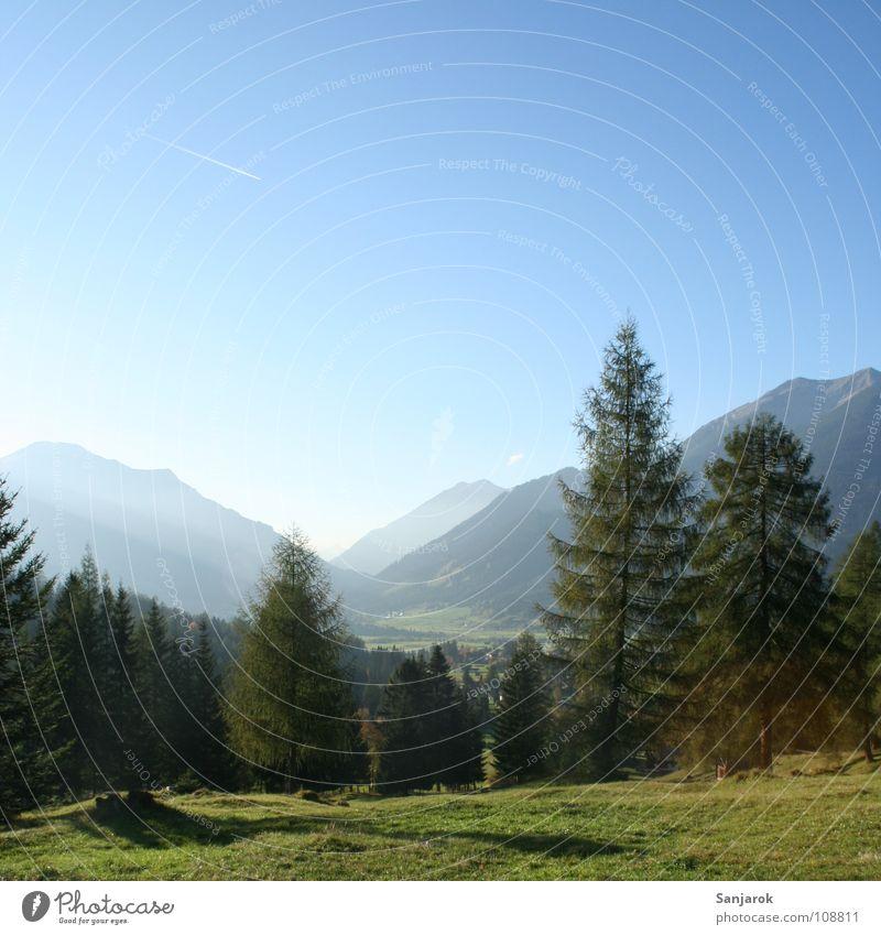 Am Eingang des Paradieses Himmel Baum Sonne grün blau Sommer Wald Wiese Berge u. Gebirge wandern Horizont hoch Sträucher Alpen Kiefer Gipfel