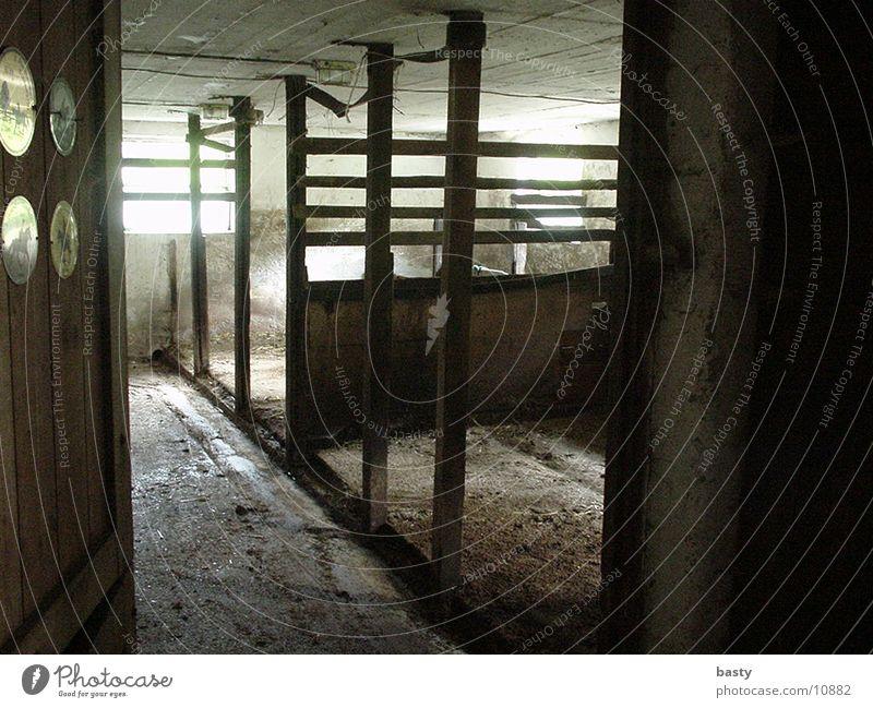 Pferdestall Stall leer Stroh historisch Schatten/Licht