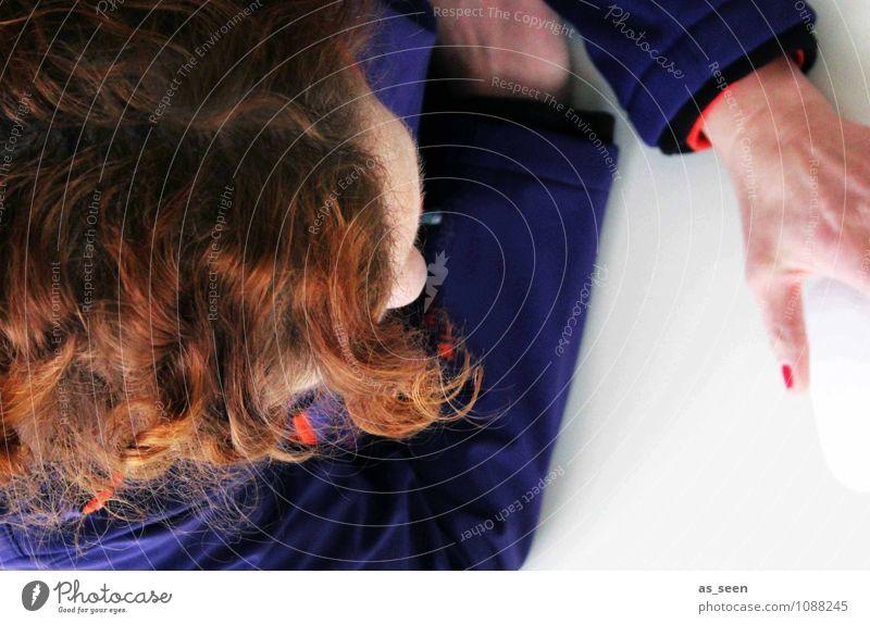 Am Schreibtisch Computer Tastatur Computermaus Bildschirm Technik & Technologie Informationstechnologie Internet feminin Frau Erwachsene Kopf Haare & Frisuren