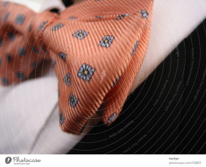 Mach die Fliege Krawatte Lachs rosa Anzug Anlass Makroaufnahme Nahaufnahme elegant Arbeit & Erwerbstätigkeit Feste & Feiern edel