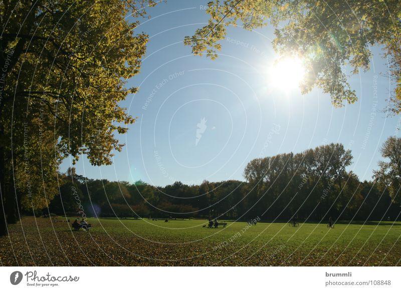 Herbsttag im Park Himmel Natur blau grün Sonne Blatt Farbe ruhig Erholung Landschaft Wiese Wärme Freiheit Garten Menschengruppe